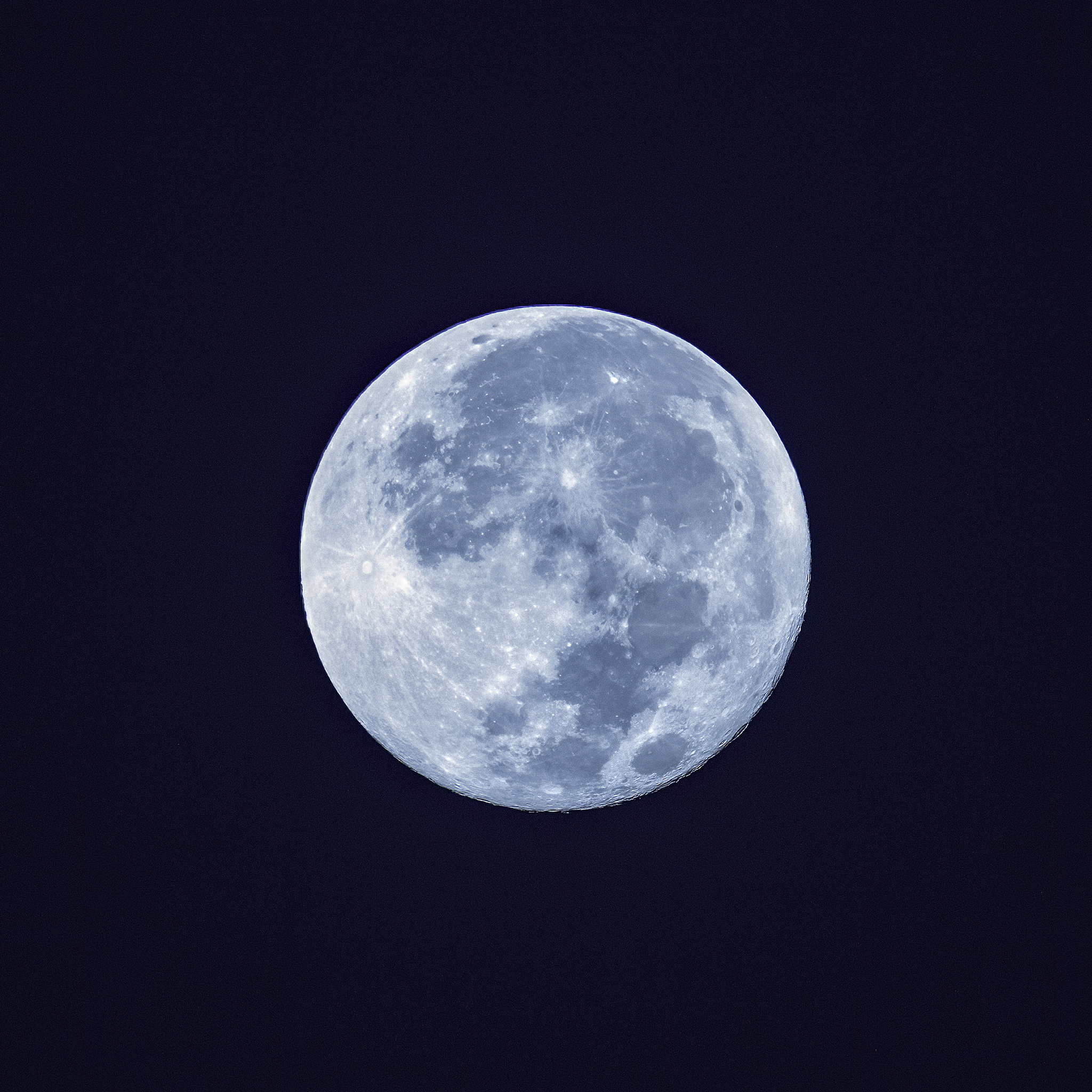 Name:  004A0024 BLue Moon.jpg